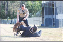 D.A.R.E. K-9 Demonstrations Across Winn Parish